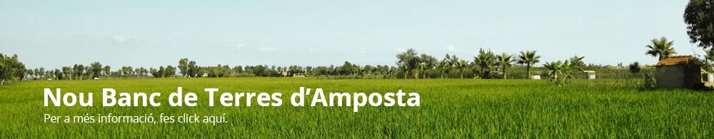 L'Ajuntament d'Amposta crea el Banc de Terres.