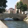 El Pont de Pedra del Canal
