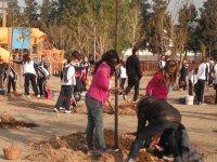 Els escolars planten 80 arbres al Parc dels Xiribecs un any després de la inauguració