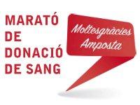 334 participants a la Marató de donació de sang
