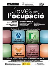 Sol·licitud d'informació per a la contractació de Joves Qualificats – Projecte Joves per l'Ocupació – Ajuntament d'Amposta