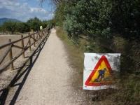 L'Ajuntament d'Amposta inicia pel seu compte la neteja del Camí de Sirga