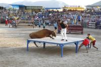 Els actes taurins de Festes Majors d'Amposta es mantenen en nombre i inclouen nous espectacles
