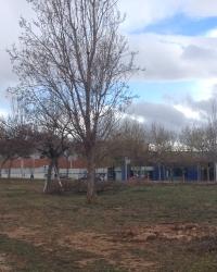 Comencen els treballs previs a la construcció de l'estació d'autobusos d'Amposta