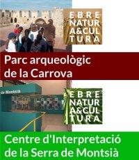 El Museu de les Terres de l´Ebre organitza durant el mes de juliol diferents activitats dintre de la xarxa Ebre Natura